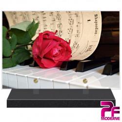 PLAQUE FUNÉRAIRE PLEXI PIANO PFM1039