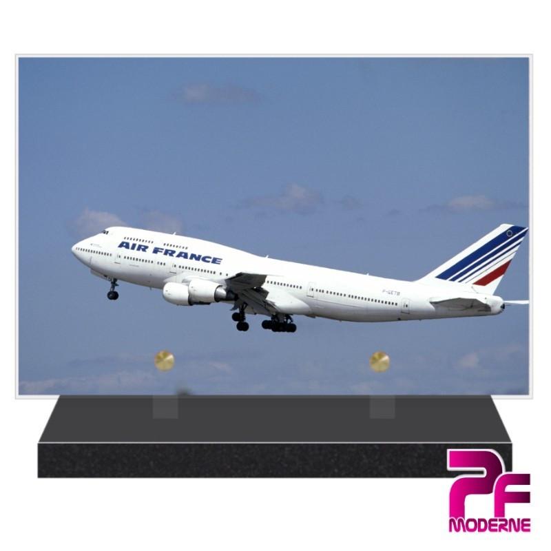PLAQUE FUNÉRAIRE AVIATION AVION DE LIGNE PFM7004