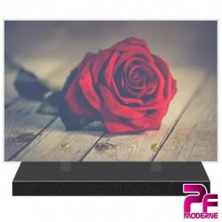 Plaque Funeraire Nature Fleurs Rose Rouge Pfm2023